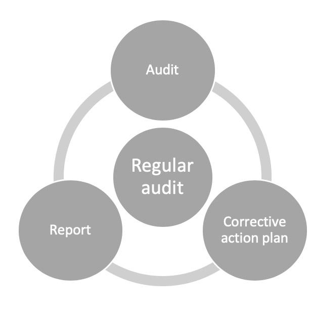 Standard Audit